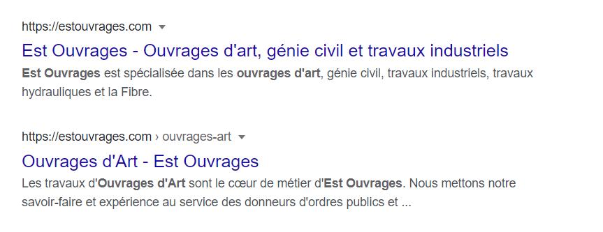 Résultats Google pour le site Est Ouvrages